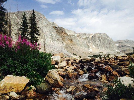 Centennial, WY: snowy range hike