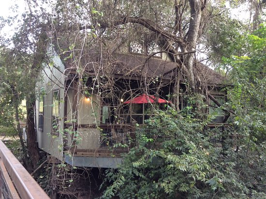 river road treehouses updated 2019 prices cottage reviews new rh tripadvisor com