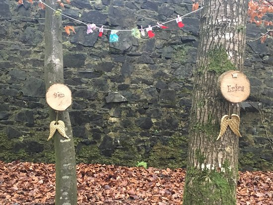 Cootehill, Ireland: Christmas at Erica's Fairy Forest