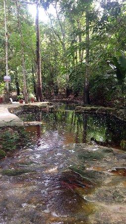 Amazon Ecopark Jungle Lodge: (a espuma não é sujeira, viu rs)
