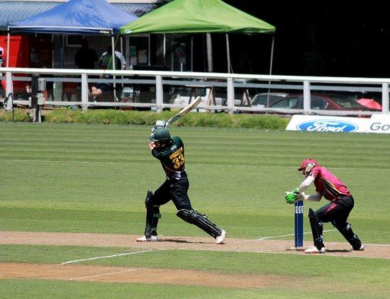 New Plymouth, Nieuw-Zeeland: cricket at Pukekura park