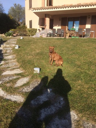 Montefiore Conca, Italie : photo0.jpg