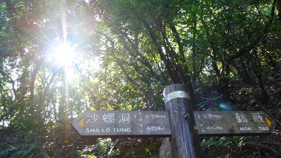 Pat Sin Leng Country Park : Hok Tau Reservoir walk