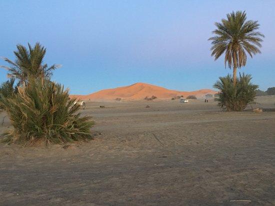 Auberge Camping Ocean Des Dunes : photo4.jpg