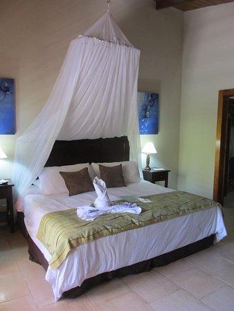 Falls Resort at Manuel Antonio: Room 11