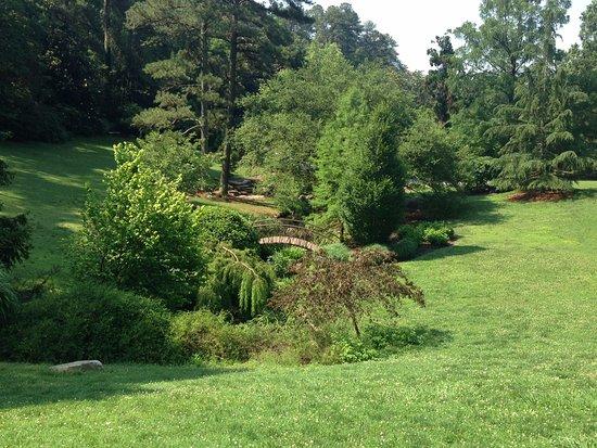 Sarah P. Duke Gardens: Beautiful and verdant gardens