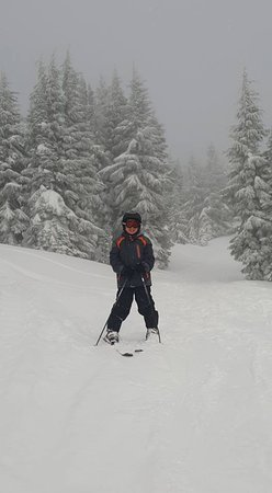 Government Camp, OR: My son skiing in someone's Christmas card :)