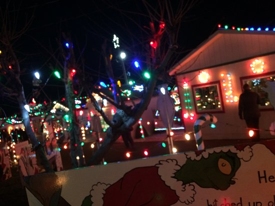 Koziar's Christmas Village - Picture of Koziar's Christmas Village ...