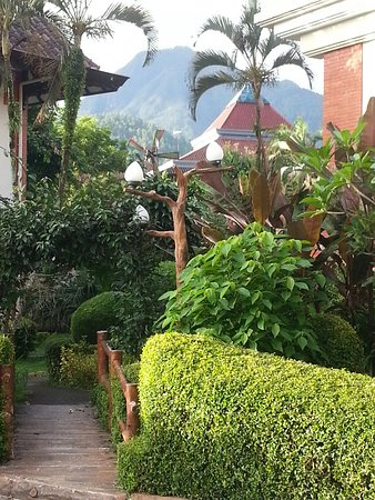 20170103 060917 large jpg picture of royal orchids garden hotel rh tripadvisor co uk