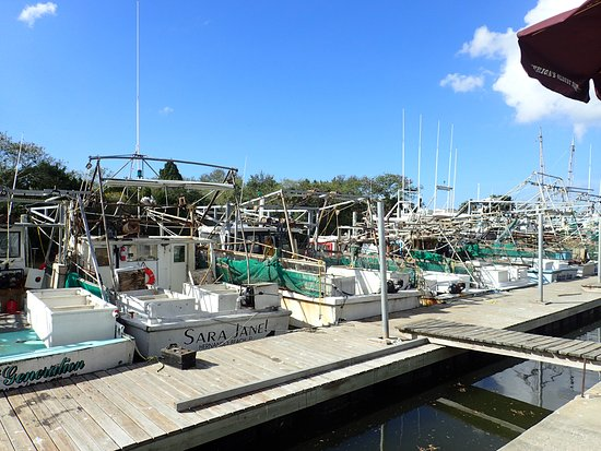Hernando Beach, FL: The fishing fleet.