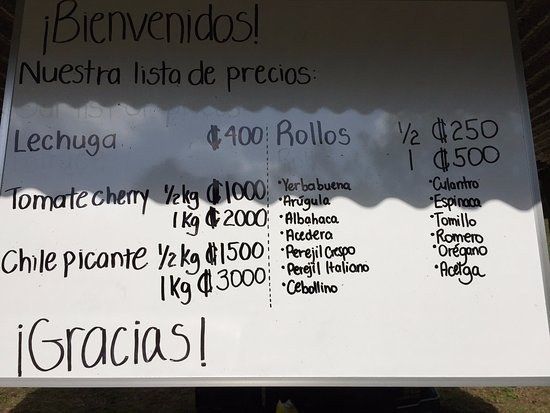 Cerro Plano, Costa Rica: Hydroponic garden price list