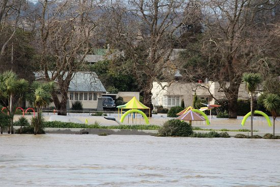 Parque Kowhai: the snake at the park is actually under water