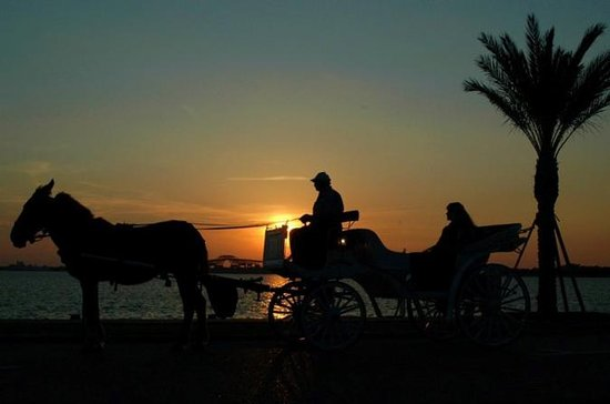 Aswan City Private Tour by Horse...