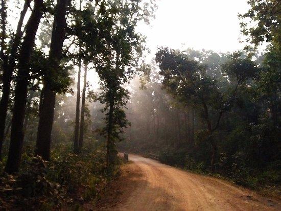 Hazaribagh, Ấn Độ: Sunrays