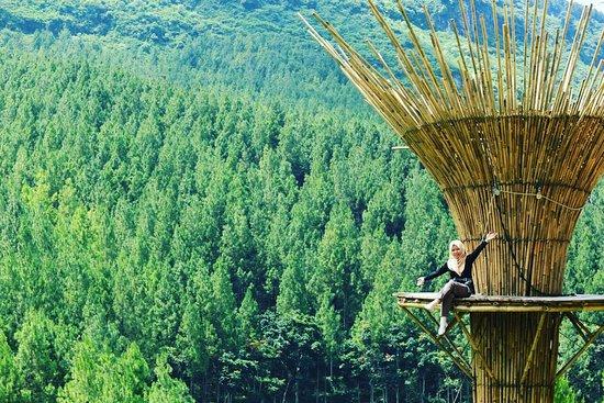 the lodge maribaya picture of the lodge maribaya lembang rh tripadvisor com