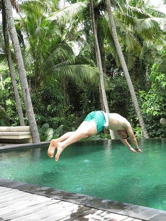 Komaneka at Rasa Sayang: Piscina enmedio de la selva, buenísima!!!