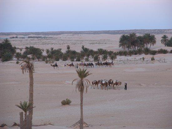 Hotel Sahara Douz: Сахара, Дуз, Тунис