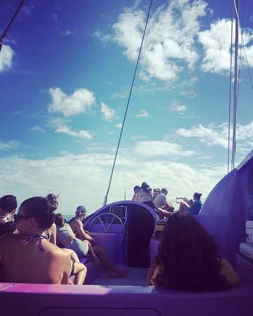 Whitsunday Island Adventure Cruises: photo0.jpg