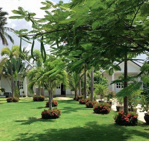 Fleur De Vie Bungalows: garden and bungalows
