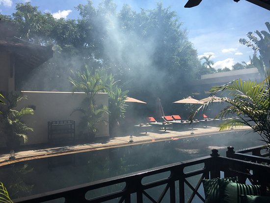 The SAMAR Villa & Spa Resort: I experienced the worst, not sure they want to kill insects or kill the guests in NY morning, fe