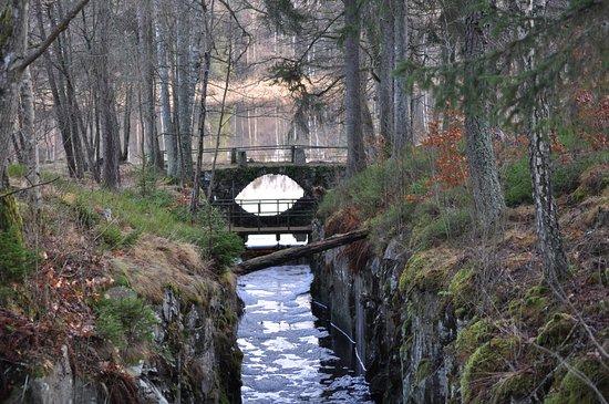 Vargon, Sverige: På Hunneberg