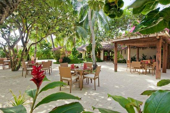 Kuramathi Island Resort: Island Coffee Shop