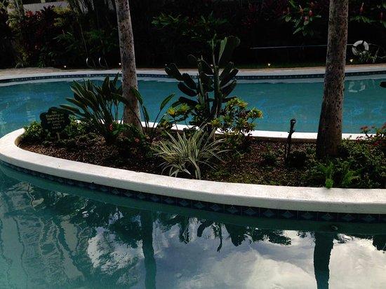 Waikiki Sand Villa Hotel: プール。けっこう深さがあります。