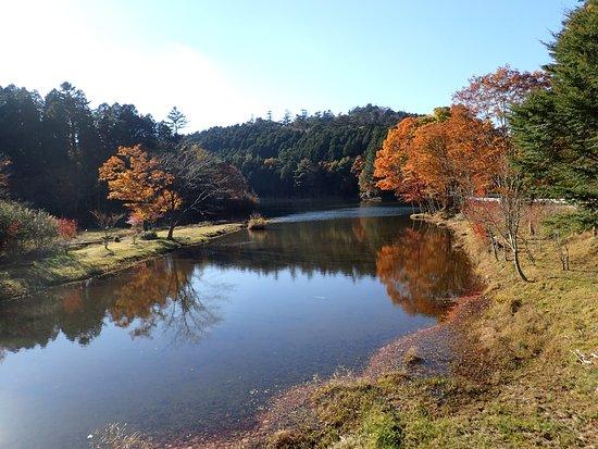 Shitara-cho, Япония: 紅葉時季の光景