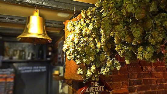 Capel, UK: Kentish Hops in the Dovecote Inn