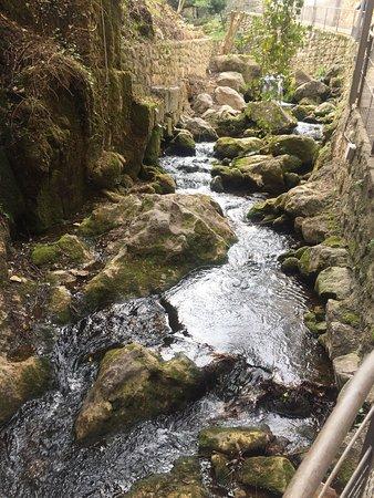 Bóveda del Rio Cerezuelo: photo3.jpg