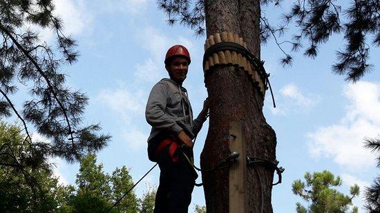 Monte Grimano Terme, Italia: Escursione al vicinissimo San Marino Adventures Park