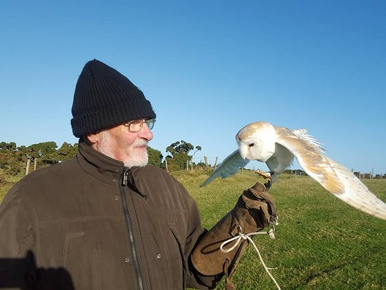 Julianstown, Ireland: Dad and the lovely Barn Owl - Bart