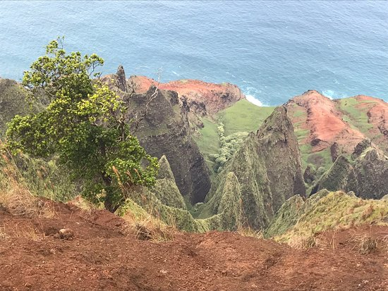 Koke'e State Park, HI: photo5.jpg