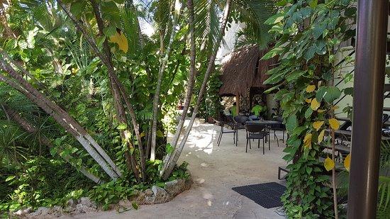 Hotel Playa del Karma: Lugn och mysig innergård med djungelkänsla.