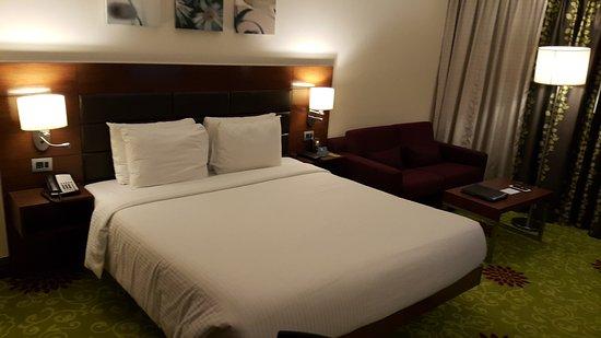 Hilton Garden Inn New Delhi / Saket: 20170101_213340_large.jpg