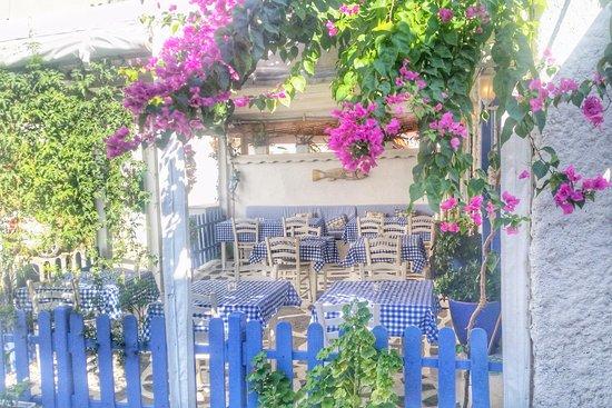Milos restaurant: milos Kale içi veranda