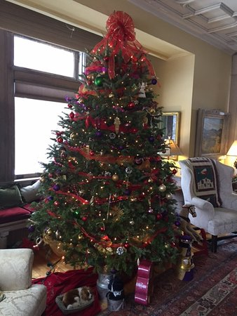 Manchester, VT: Christmas Tree in the Main House