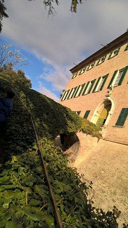 Monterado, Italia: Parte del parco del Castello visto dall'interno delle mura.