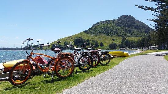Ezy Bikes