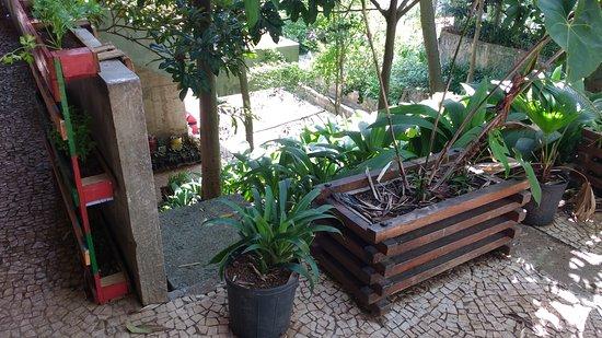 Centro de Culturas Negras do Jabaquara - Mãe Sylvia de Oxalá