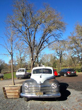 Forestville, CA: Vintage car