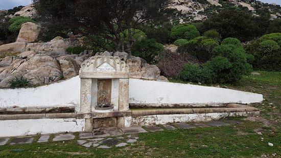 Asinara, Italy: Sorgente naturale