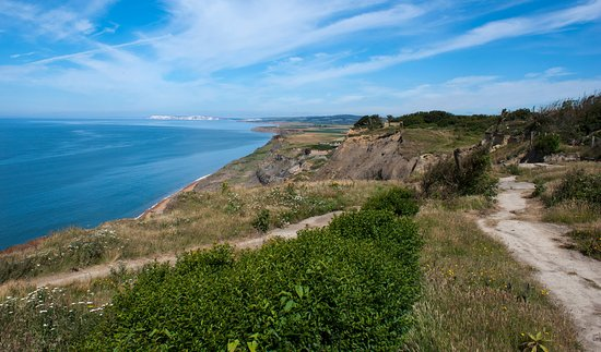 Ventnor, UK: Looking west from Blackgang, part of the old park in the foreground.