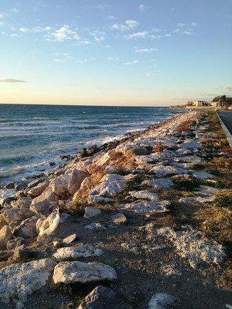 Spiaggia di Falerna: IMG_20161228_161722_large.jpg