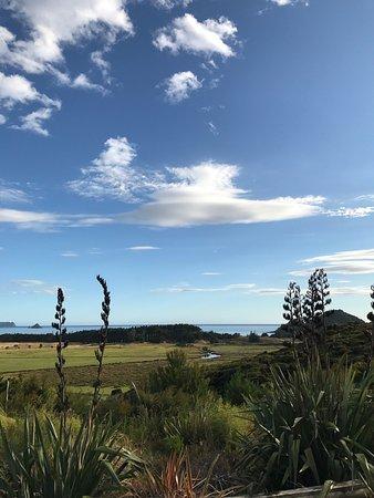 グレートバリアー島 Picture
