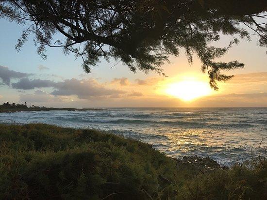 Ocean Spray Beach Apartments: The views