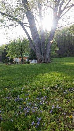 Lovettsville Photo