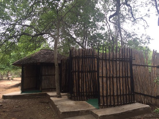 Marc's Treehouse Lodge: photo1.jpg