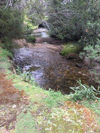 Maydena, Australien: Junee Caves