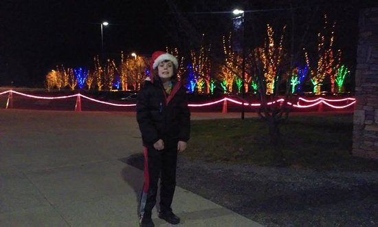 The North Carolina Arboretum: This photo is of my son and the entrance to the Winter Lights. This is just the entrance. Amazin